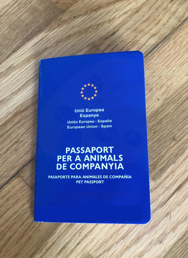 pasaporte para braco de weimar