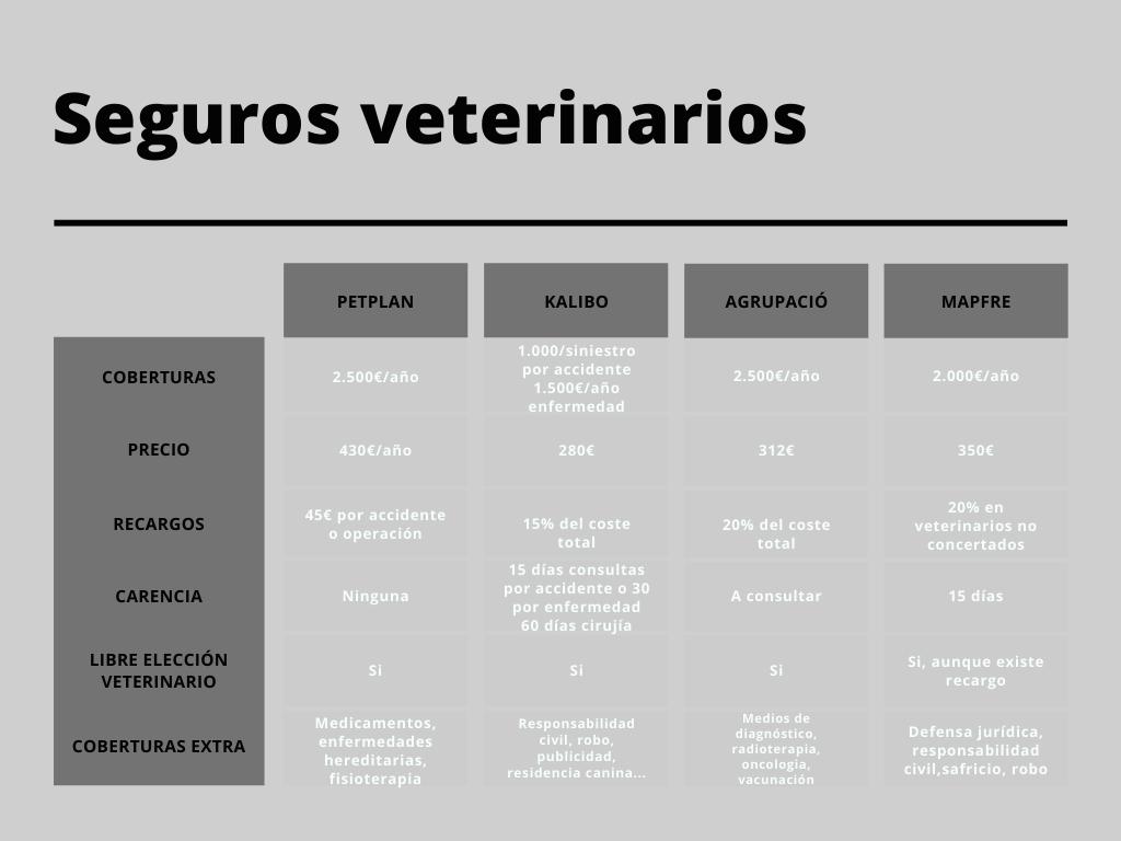 seguro veterinario para braco de weimar